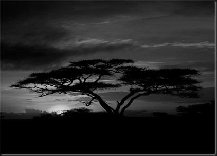 cielo en blanco y negro 3