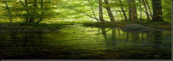 agua en verde