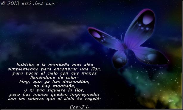 mariposas-0